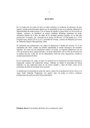 tesis final claudia muñoz correccion2008 - Tesis Electrónicas ...
