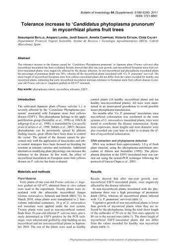 Tolerance increase to 'Candidatus phytoplasma prunorum' in ...