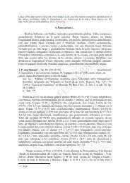 6. Pancratium L. Hierbas bulbosas, con bulbos tunicados ...