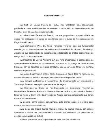 MURARA JR 02.pdf - Universidade Federal do Paraná