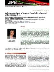 Molecular Analysis of Legume Nodule Development - NMSU Web ...