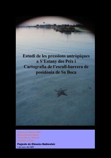 Estudi de les pressions antròpiques a S'Estany des Peix i ...
