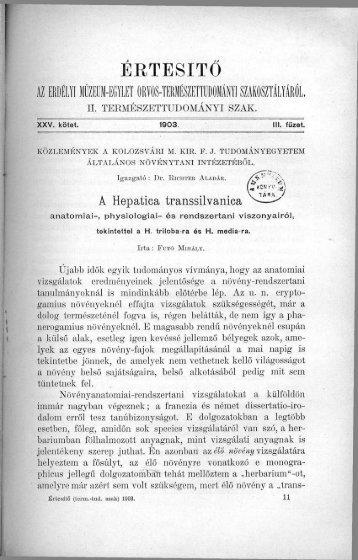 A Hepatica transsilvanica anatómiai-, physiologiai