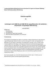 Orientierungshilfe zu Leistungen nach SGB XII und SGB VIII für ...