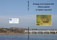 Ecology of an invasive fish (Silurus glanis) in Catalan ... - Minuartia