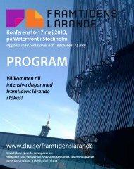 Program_FL2013