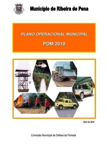 POM 2010 - Câmara Municipal de Ribeira de Pena
