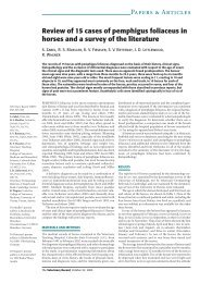 Review of 15 cases of pemphigus foliaceus in horses and ... - Laboklin