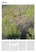Abril de 2012 - Sarment - Page 6