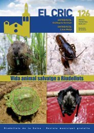 El Cric nº 126 març: Vida animal salvatge - Ajuntament de Riudellots ...