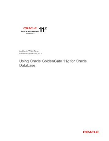 white-paper-using-oracle-goldengate-11g-