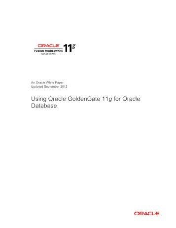 Pdf documentation oracle 11g