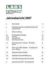 Jahresbericht 2007 - pdf (989 KB) - LandesArbeitsgemeinschaft für ...