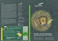 Ein Jahr mit der Haselmaus - Sächsische Landesstiftung Natur und ...