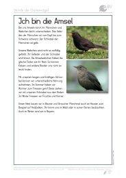 Vorstellung der 12 Arten - LBV