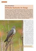 Bericht zum LBV-Kuckuck-Projekt - Seite 2