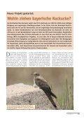 Bericht zum LBV-Kuckuck-Projekt - Seite 5
