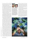 Melhorar a mandioca e alimentar os pobres - gene conserve - Page 4