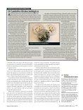 Melhorar a mandioca e alimentar os pobres - gene conserve - Page 6
