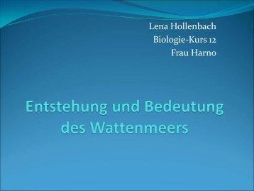 Entstehung und Bedeutung des Wattenmeers