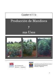 Producción de Mandioca y sus Usos