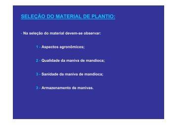 Aula 02 de Mandioca - UFSM