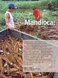 Artigo Mandioca.pmd - gene conserve