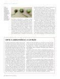 Artigo Mandioca.pmd - gene conserve - Page 5