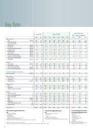 Key Data - Lenzing