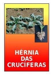 Folder Hérnia das Crucíferas Novo - Incaper