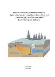 Reaktive Systeme zur Grundwasserreinigung - Lehr- und ...
