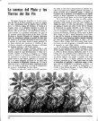 Nº 2 - Las tierras del Sin Fin - Page 4