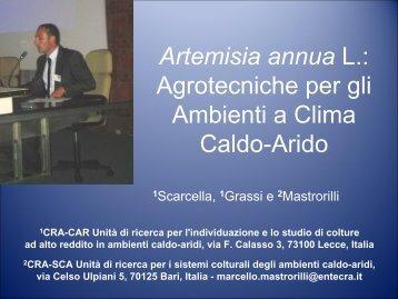 Artemisia annua L.: Agrotecniche per gli Ambienti a Clima Caldo-Arido