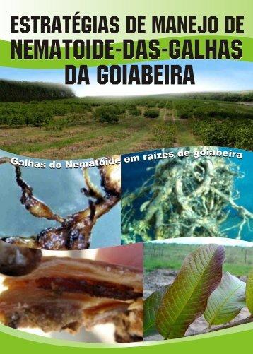 Nematoide-das-galhas da goiabeira - Incaper