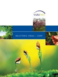 RELATÓRIO ANUAL | 2009 - Visão Prev