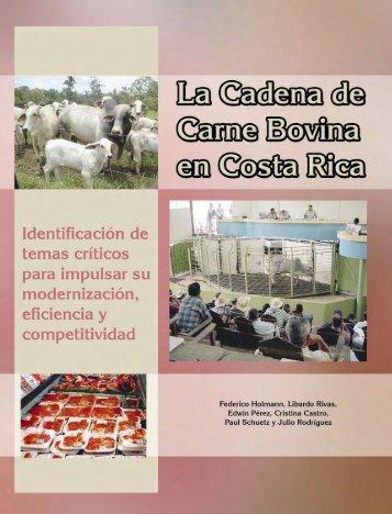 Análisis de la cadena de la carne bovina en Costa Rica: - CORFOGA