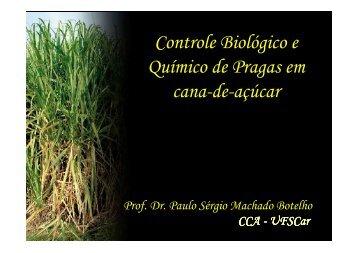 Controle Biológico e Químico de Pragas em cana-de-açúcar - Apta