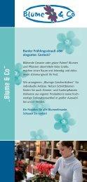 Lebenshilfe Rotenburg-Verden gemeinnützige GmbH - Blume & Co