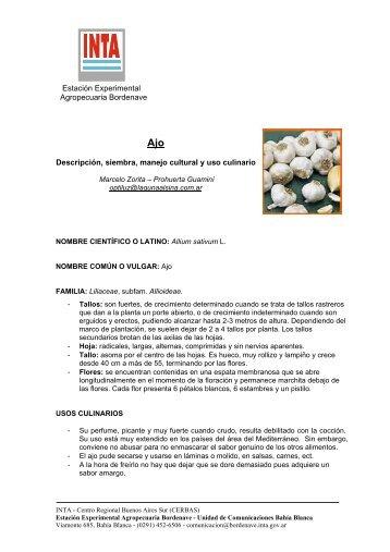 5. ajo.pdf - INTA