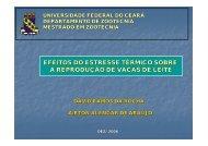 Efeitos do Estresse Térmico sobre a - Bioclimatologia.ufc.br