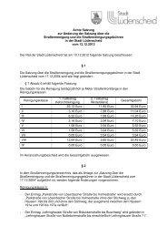 Internet Satzung Straßenreinigung 8 Änderungssatzung - Stadt ...
