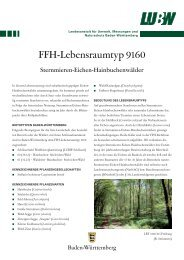 FFH-Lebensraumtyp 9160 - Landesanstalt für Umwelt, Messungen ...