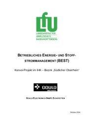 BETRIEBLICHES ENERGIE- UND STOFF- STROMMANAGEMENT ...