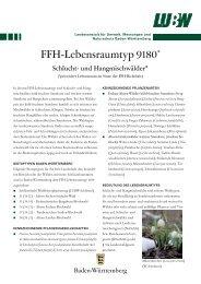 pdf; 1,3 MB - Landesanstalt für Umwelt, Messungen und Naturschutz ...