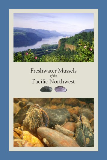 Freshwater Mussels Pacific Northwest - The Xerces Society