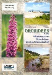 Orchideen in der Mitteldeutschen Braunkohlen ... - LMBV