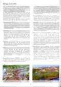 Orchideen in der Mitteldeutschen Braunkohlen ... - LMBV - Seite 4