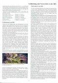 Orchideen in der Mitteldeutschen Braunkohlen ... - LMBV - Seite 7