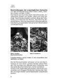 Radwandern in der Goitzsche - LMBV - Seite 7