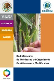 Red Mexicana de Monitoreo de Organismos ... - Cibiogem